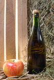 Bottle of cider with a apple and straw Stock Images