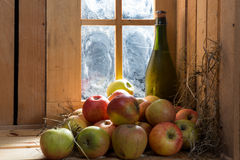 Bottle of cider with apples Royalty Free Stock Photography