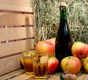 Bottle of cider with some apples Royalty Free Stock Images