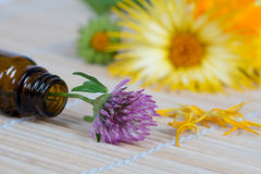Bottle, clover and calendula on bamboo plate Royalty Free Stock Photos