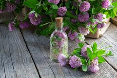 Bottle of clover tincture or infusion and clover flowers bunch in wooden crate. royalty free stock image