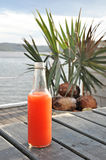 A bottle of cold fruit punch on the table nearby the lake Royalty Free Stock Image