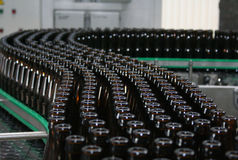 Bottle conveyor. A lot of beer bottles moving by conveyor Royalty Free Stock Images