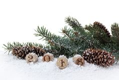 Bottle cork, pine and cones Stock Image