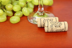 Bottle corks Stock Photo