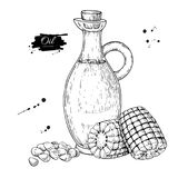Bottle of corn cooking oil. Vector Hand drawn illustration. Glass pitcher vintage Stock Images