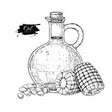 Bottle of corn cooking oil. Vector Hand drawn illustration. Glass pitcher vintage Royalty Free Stock Photos
