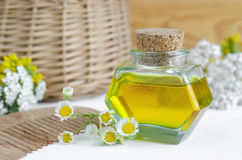Bottle of cosmetic oil with flowers and herbal extracts and wooden hair comb for natural hair care Stock Image