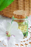 Bottle of cosmetic oil (perfume, tincture) and exotic flower Stock Image