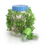 Bottle covered by plants and two pills with flowers inside Royalty Free Stock Photo