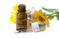 Bottle and dropper with calendula and clover flowers Royalty Free Stock Image