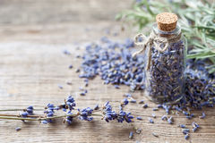 Bottle of dry lavender flowers. Royalty Free Stock Image