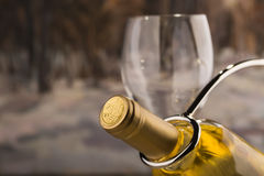Bottle of dry white wine. On a wooden background Stock Photo
