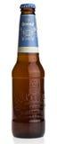 Bottle of Dutch Brand Weizen beer Royalty Free Stock Photos