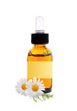 Bottle with essence oil and chamomile flowers Stock Images