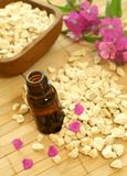 bottle of essence oil with flowers and stones Stock Photography