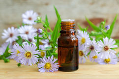 Bottle of essential aroma oil (herbal extract, tincture, infusion). Small bottle of essential aroma oil (herbal extract, tincture, infusion stock images