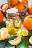Bottle of essential citrus oil and ripe tangerines in basket Stock Image