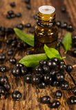 bottle of essential oil and berries elderberry Stock Photo