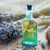 Bottle of essential oil and bunch of lavender flowers stock image