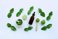 Bottle of essential oil and fesh bergamot fruit with leaves isolated on white. Background stock photos