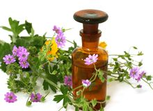 Bottle of essential oil and flowers isolated on wh Stock Photography