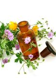 Bottle of essential oil and flowers isolated on wh Royalty Free Stock Photography