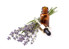 A bottle of essential oil with fresh blooming lavender twigs on stock photo