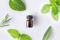 Bottle of essential oil with fresh herbal sage, rosemary, lemon stock images