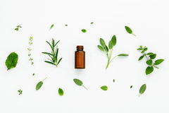 Bottle of essential oil with fresh herbal sage, rosemary, lemon Royalty Free Stock Photography