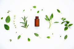 Bottle of essential oil with fresh herbal sage, rosemary, lemon Royalty Free Stock Photos