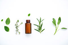 Bottle of essential oil with fresh herbal sage, rosemary, lemon Royalty Free Stock Image