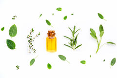 Bottle of essential oil with fresh herbal sage, rosemary, lemon Stock Photos