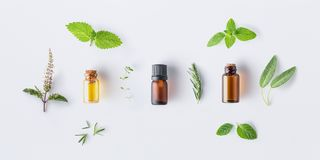 Bottle of essential oil with fresh herbal sage, rosemary, oregano, thyme, lemon balm spearmint and peppermint setup with flat lay stock images