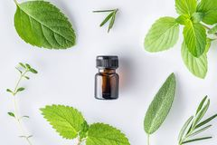 Bottle of essential oil with fresh herbal sage, rosemary, thyme, lemon balm spearmint and peppermint setup with flat lay on white stock photography