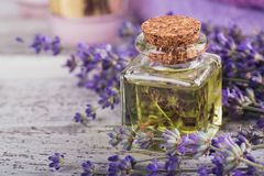 Bottle of essential oil and fresh lavender flowers Royalty Free Stock Photo