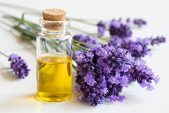 A bottle of essential oil with fresh lavender twigs Stock Image