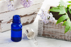Bottle of essential oil with fresh lilac flower Stock Photos