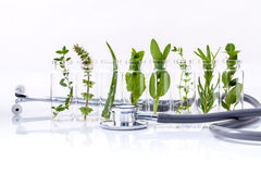 Bottle of essential oil with herbs. Royalty Free Stock Photos