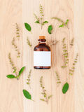 Bottle of essential oil with holy basil leaf and flower . Royalty Free Stock Images