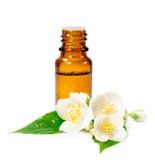 Bottle of essential oil and jasmine flowers Royalty Free Stock Images