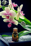 Bottle of essential oil with orchid flowers Stock Images
