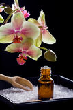 Bottle of essential oil with orchid flowers Stock Photography
