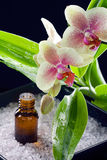 Bottle of essential oil with orchid flowers Royalty Free Stock Photography