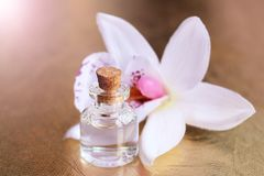 Bottle of essential oil and orchid flowers Royalty Free Stock Photography