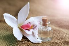 Bottle of essential oil and orchid flowers Royalty Free Stock Image