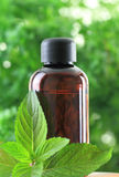 Bottle of essential oil Stock Photo
