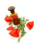 Bottle of essential oil and red poppy isolated on Royalty Free Stock Images