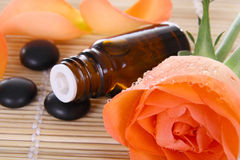 Bottle of essential oil and rose Royalty Free Stock Image