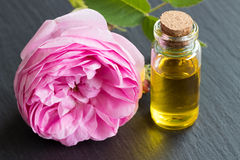 A bottle of essential oil with a rose flower Royalty Free Stock Photos